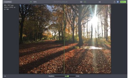 PhotoLemur: is this quick photo editor a revelation in image enhancement?