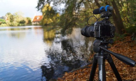 What frame rate to use for shooting video