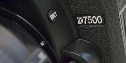 Nikon D7500 Sample Images
