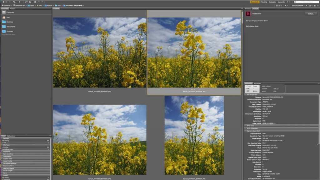 Rejecting, rating and filtering images in Adobe Bridge