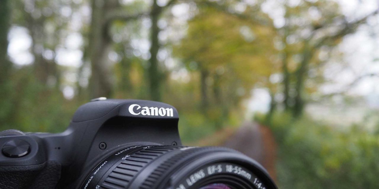How to shoot a timelapse on the Canon EOS 200D / Rebel SL2