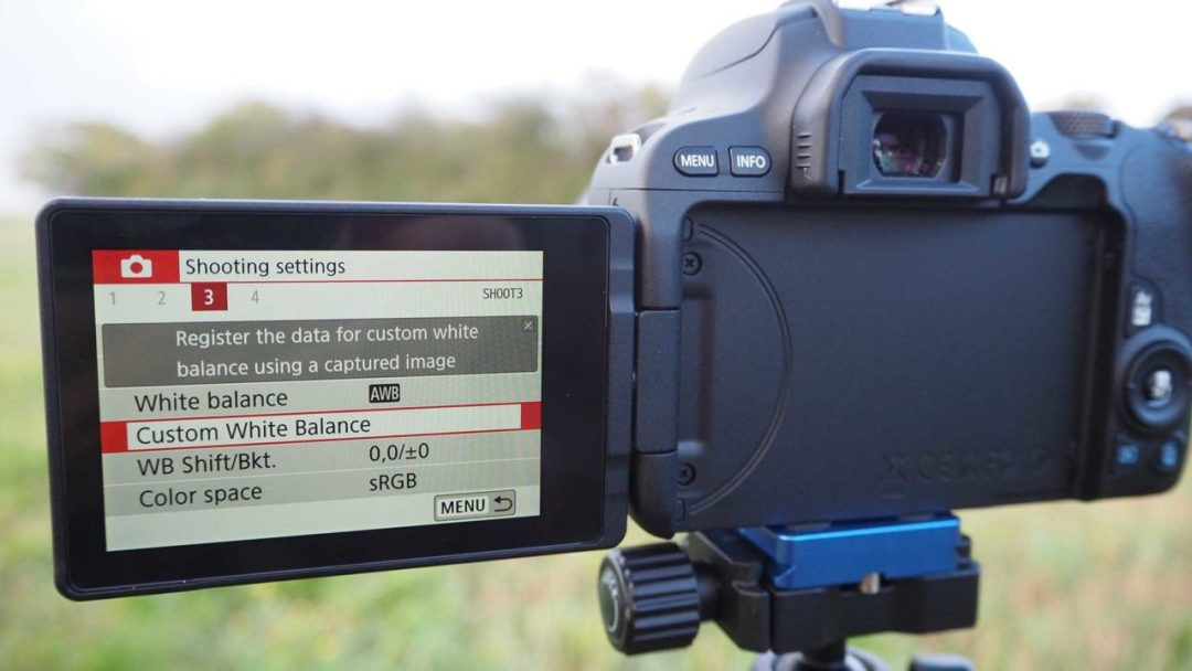 Setting a custom white balance in the Canon 200D / Rebel SL2 Guided Menu