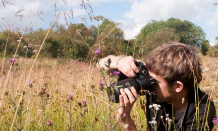 Berks, Bucks and Oxon Wildlife Trust photography competition