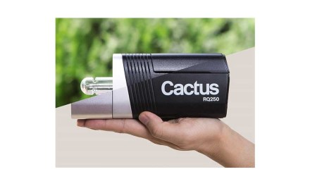 Cactus launches palm-size RQ250 wireless monolight