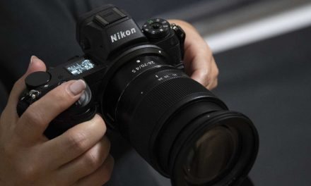 Nikon Z 6 Review: Updated with Wildlife Pro Comment