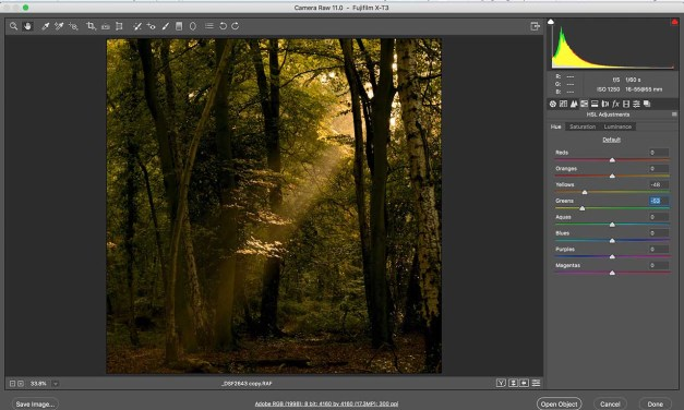 Fujifilm X-T3 raw files after 5 minutes in Photoshop