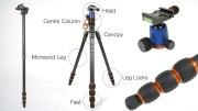 Your complete guide to tripod anatomy