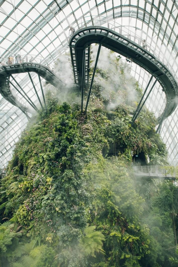 «Дуэт фотографов путешествует по миру, снимая ботанические сады, оранжереи и теплицы 1