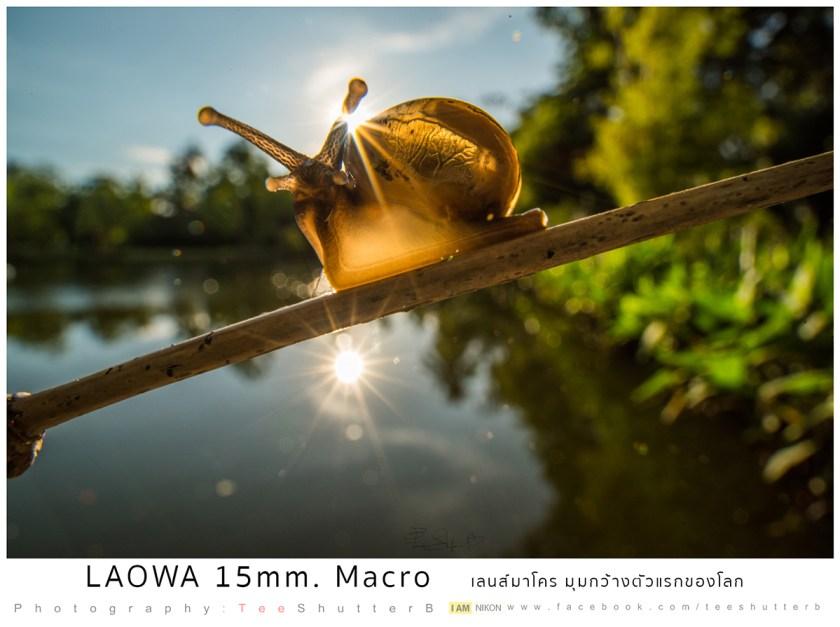 รีวิว Laowa 15mm Macro เลนส์มาโครมุมกว้าง