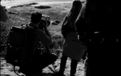 Looking over the shoulder of photographers at elephant seals in California