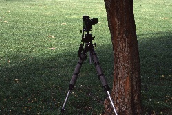 A 55mm lens needs less distance from the subject to get the same picture.