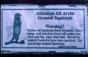 Sign restricting the feeding of Arctic Ground Squirrels in Denali, Alaska. Photo by Lorelle VanFossen