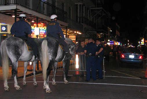 Bourbon Street horse patrols, photograph by Lorelle VanFossen