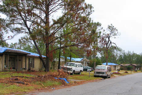 Pascagoula neighborhood with blue tarp roofs