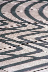 Shadows create texture on the sidewalk, photograph by Lorelle VanFossen