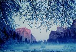 Winter in Yosemite National Park, photo by Brent VanFossen