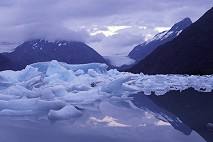 Portage Lake, Alaska, Icebergs, photo by Brent VanFossen