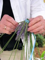 lavender festival 2009 (6)