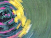 tulip blur circles 13 lorelle vanfossen