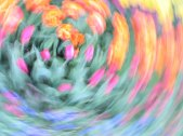 tulip blur circles 23 lorelle vanfossen