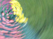 tulip blur circles 9 white lorelle vanfossen