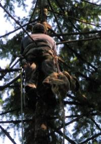 dj tree and climber face to face