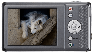 Pentax Optio VS20 Manual, for Modern Compact Camera from Legendary Manufacturer