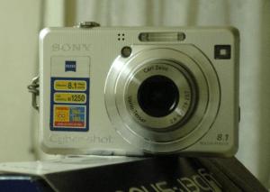 Sony DSC-W100 Manual (camera front side)