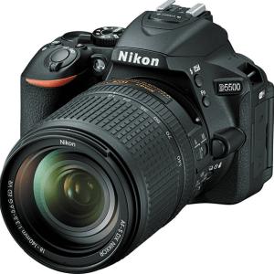 Nikon D5500 Manual (Camera Body and Lens)