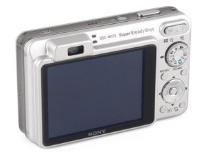 Sony DSC-W170 Manual (camera backside)