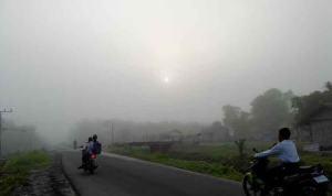 Photographer: Foggy Situation