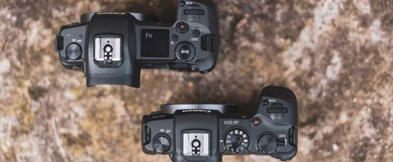 Canon Camera: EOS R VS EOS RP, Which is Batter? 1
