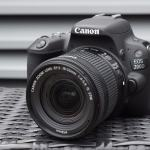 Recomendation Canon DSLR in 2019 for Beginner or Profesional Photogrpher 9