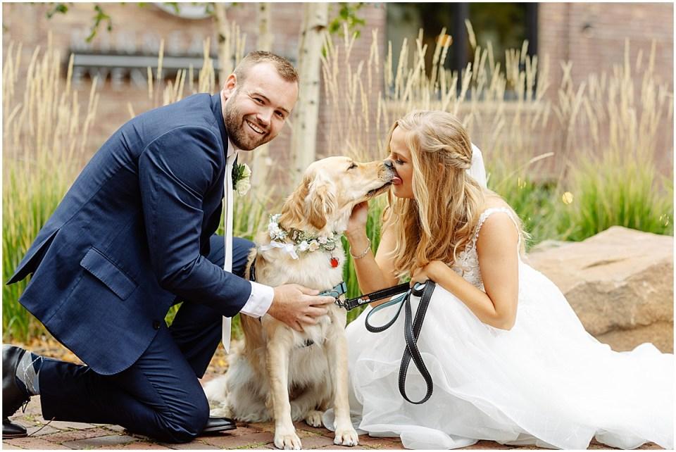 Flower collar for dog at wedding