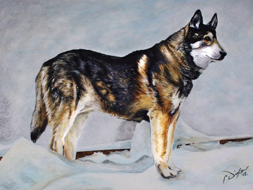 2012-10 – Pet Portrait Painting by Cameron Dixon – Rebel I & II