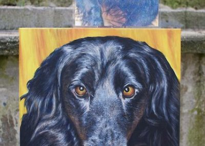 2013-03 - Commissioned Pet Portrait Painting - Molly- complete