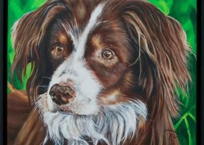 2013-04 - Commissioned Pet Portrait Painting - Cedi copy