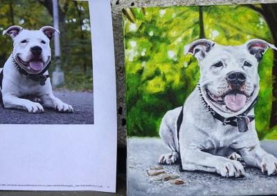2015-03 - Commissioned Pet Portrait Painting - Cowboy - Comparison