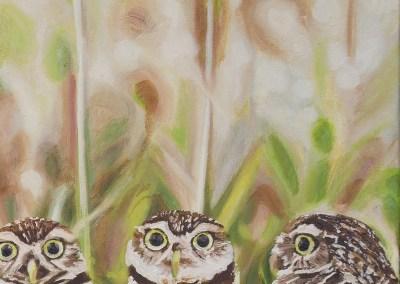 2016-05 - Art Bark - Burrowing Owls - Original Painting by Cameron Dixon - detail-b