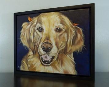 Cameron Dixon - DSC00116-pet-portrait-Mags-left-1080px