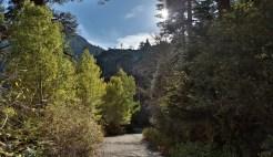 CameronFrostPhotography_Tahoe05