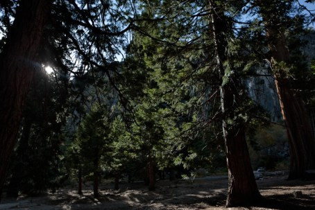 CameronFrostPhotography_Tahoe09