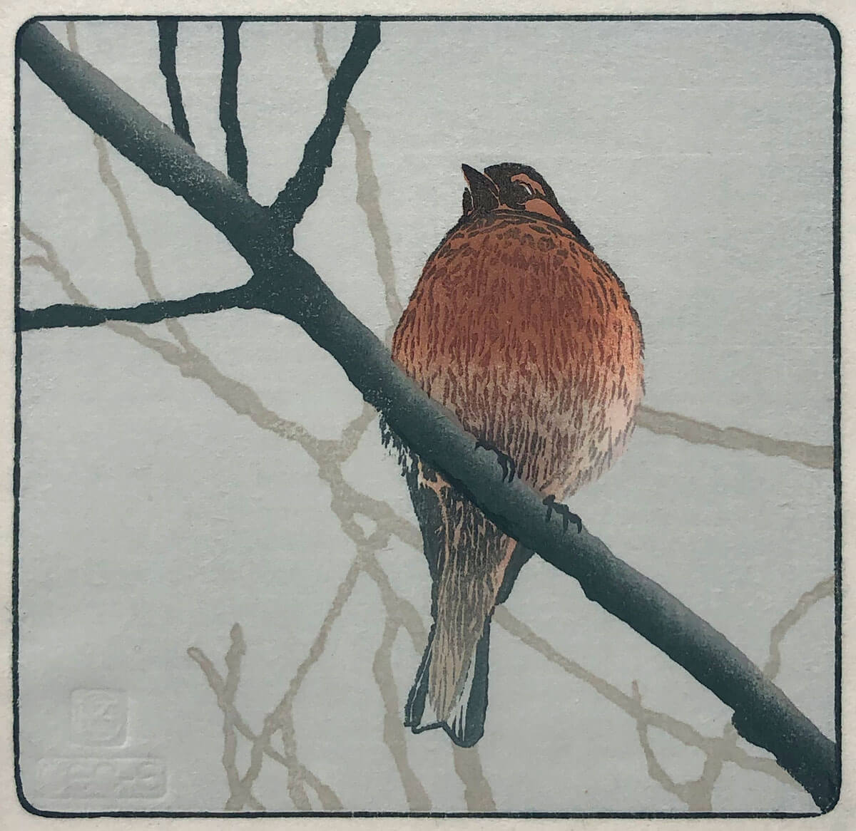 Chaffinch woodblock print by Claire Cameron-Smith