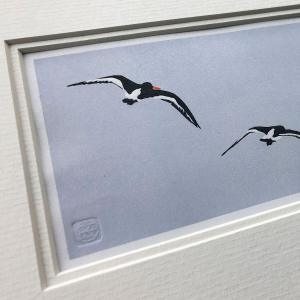 handmade linocut print of black and white oyster catcher birds in flight against pale blue sky background