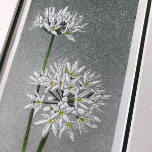 handmade print of two white wild garlic flowers against graded grey background