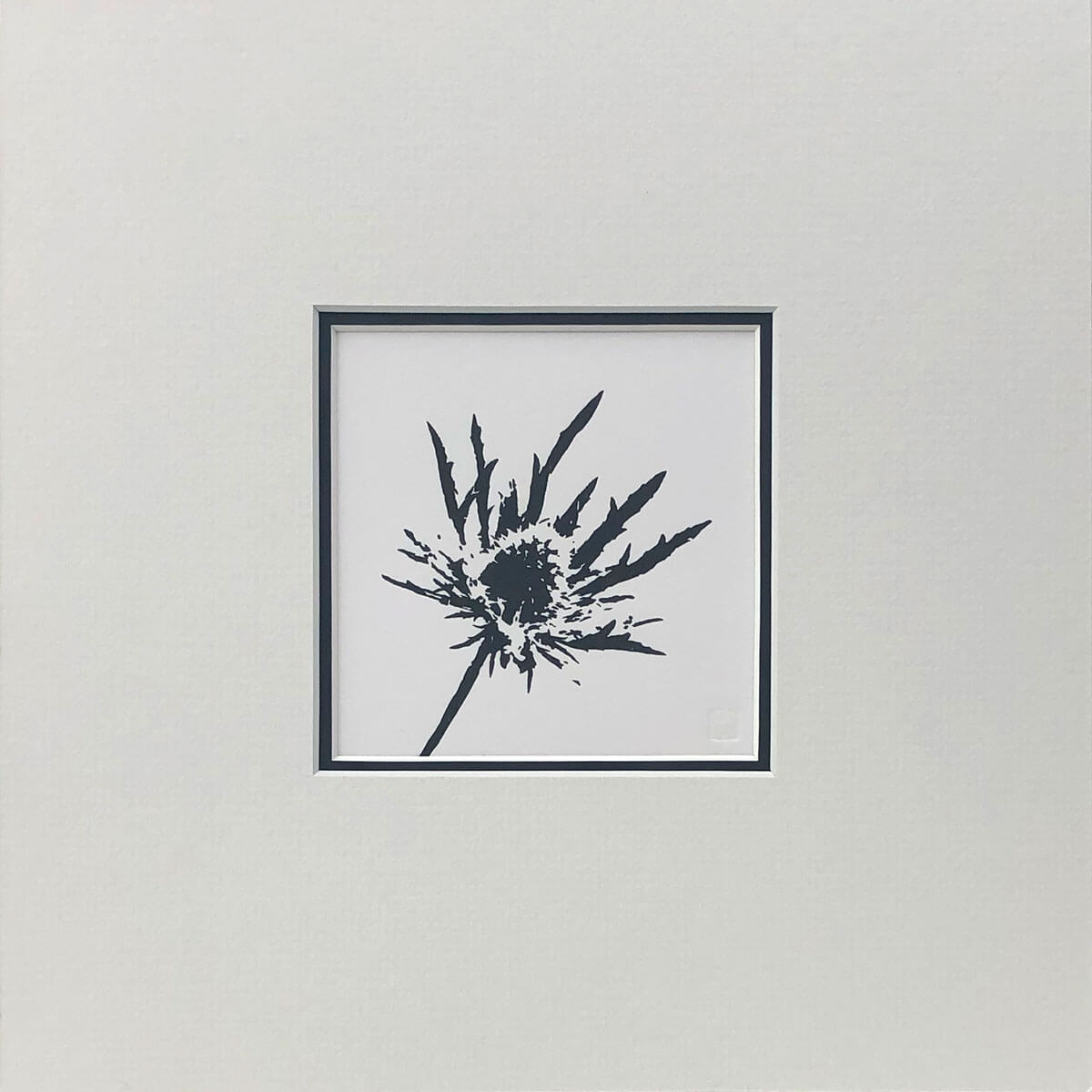 Sea Holly woodblock print mounted by Claire Cameron-Smith
