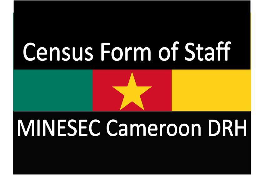 Census Form of Staff of MINESEC Cameroon DRH