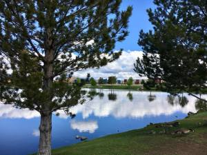 Solo Walk Vintage Lake Reflections 5.17.18