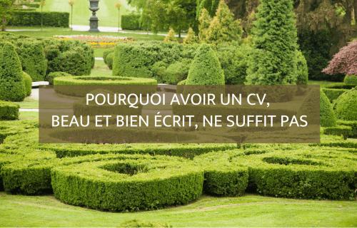 Pourquoi avoir un CV, beau et bien écrit, ne suffit pas - Blog Camille Gautry - Optimisation de Carrière et de Recrutement | Expatriation | Retour en France