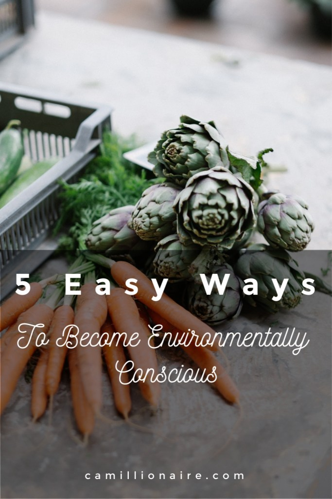 5 ways to become environmentally conscious